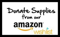 Purchase items from Amazon.com for baskets